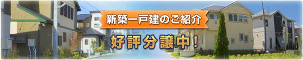 banner_l_sinchaku02.jpg